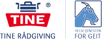 GEITHELSETJENESTEN Logo