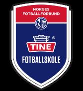 Bilderesultat for tine fotballskole 2019